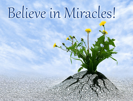Believe in miracles, inspiring conceptual image with added quote.
