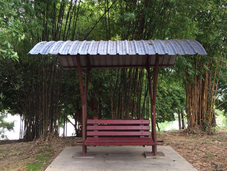 Park bench with bamboo in back