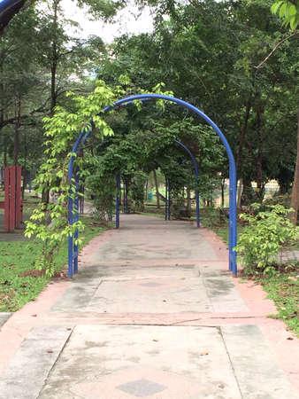 Park walkway