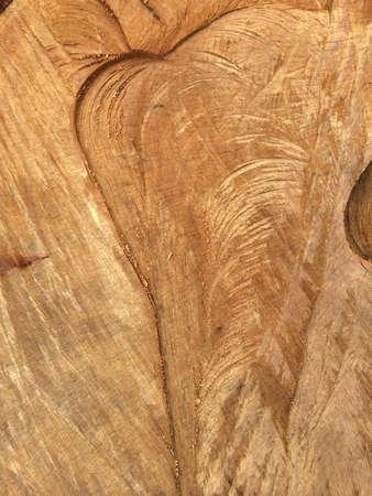 Tree trunk grain pattern Banco de Imagens