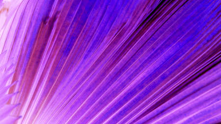 Abstract graphic background. purple blue Stock Photo