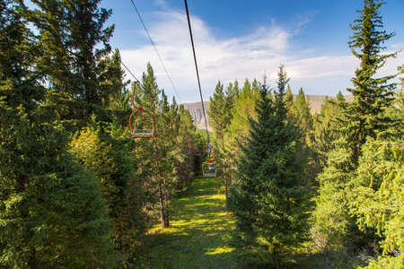 Summer mountain landscape high in the mountains. Tall trees of Christmas trees, ski lift at the ski base