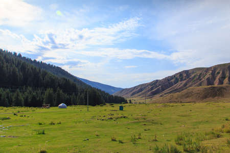 Summer landscape in the mountains. Tall trees of a Christmas tree, the national dwelling is a yurt. Kyrgyzstan Tourism and travel