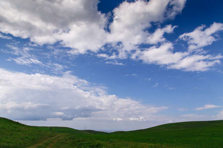 Cumulus clouds on a blue sky. Over the green field. Spring flowering grass.