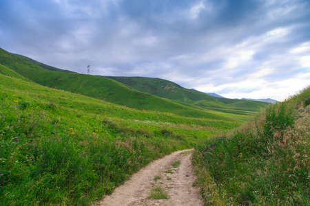 Beautiful spring and summer landscape. Mountain country road among green hills. Lush green hills, high mountains. Spring flowering grass.