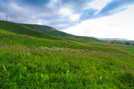 Beautiful spring and summer landscape. Lush green hills, high snowy mountains. Spring blooming herbs. Banque d'images - 150369026