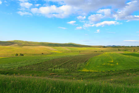 Beautiful spring and summer landscape. Lush green hills, high snowy mountains. Spring blooming herbs. Banque d'images - 150369213