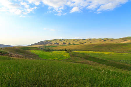 Beautiful spring and summer landscape. Lush green hills, high snowy mountains. Spring blooming herbs. Banque d'images - 150470842