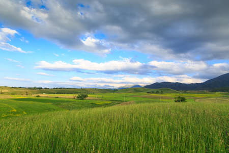 Beautiful spring and summer landscape. Lush green hills, high snowy mountains. Spring blooming herbs. Banque d'images - 150435390