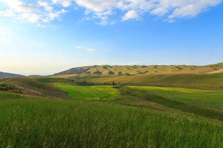 Beautiful spring and summer landscape. Lush green hills, high snowy mountains. Spring blooming herbs. Banque d'images - 150470843