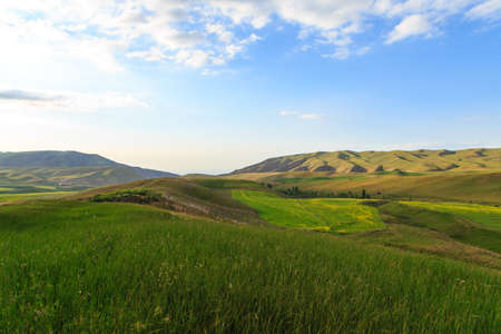 Beautiful spring and summer landscape. Lush green hills, high snowy mountains. Spring blooming herbs. Banque d'images - 150470850