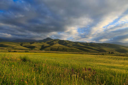 Beautiful spring and summer landscape. Lush green hills, high snowy mountains. Spring blooming herbs. Banque d'images - 150437037
