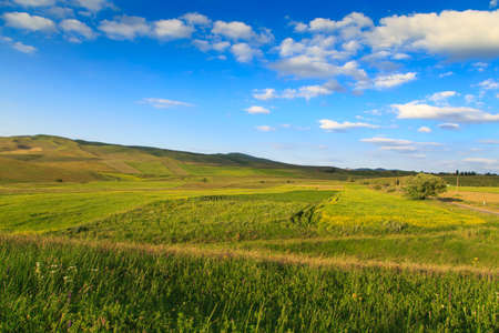 Beautiful spring and summer landscape. Lush green hills, high snowy mountains. Spring blooming herbs. Banque d'images - 150470875