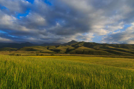 Beautiful spring and summer landscape. Lush green hills, high snowy mountains. Spring blooming herbs. Banque d'images - 150470887