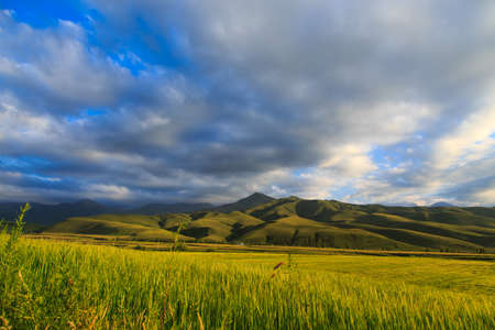 Beautiful spring and summer landscape. Lush green hills, high snowy mountains. Spring blooming herbs. Banque d'images - 150470888