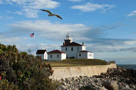 guiding light: Watch Hill Lighthouse on a warm summer evening as seagull flies by. Stock Photo