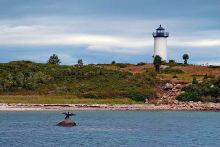 tarpaulin: Cormorants dry their wings in front of Tarpaulin Cove lighthouse in Massachusetts. Stock Photo