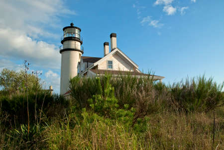 shrubbery: Low angle sun illuminates Highland lighthouse which is surrounded by shrubbery on Cape Cod.