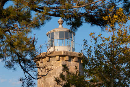 Historic Stonington Harbor lighthouse tower surrounded by evergreen tree branches without a lantern for light.