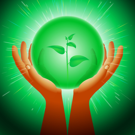 between: Hands with a transparent sphere with plant sprout Environmental and nature protection Mystical Orb between palms Eps10 Illustration