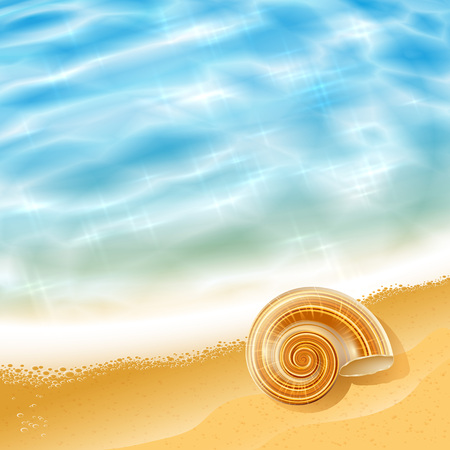 cockleshell: Summer beach seascape with waves and a sea shell on the shore on a sunny day; Vector background