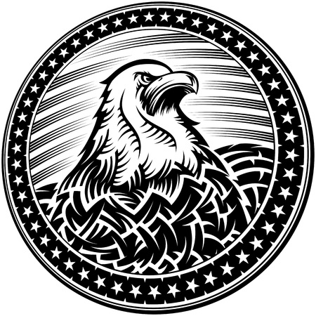 The American Bald Eagle With Stars And Stripes As A Symbol Of