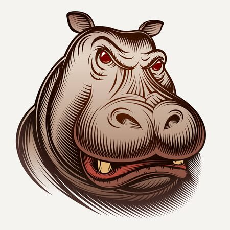 Head of an animal hippo. Big isolated face muzzle of aggressive hippopotamus. Vector inked vintage illustration of retro engraving style for print design, mascot, portrait for avatar. Color version.