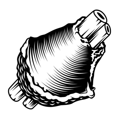 Gegrillte gebackene fleischige Schweinshaxe. Traditionelles Essen für das Oktoberfest. Handgezeichnete Vektorgrafik im Retro-Schwarz-Weiß-Stil aus gravierten Vintage-Strichen für Stempel, Tätowierung oder Druck.