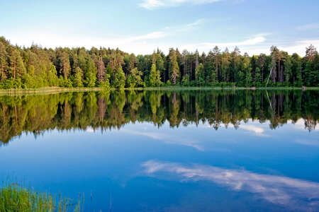 water's edge: Pine forest and sky reflected in the lake  Russia