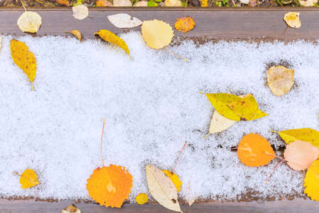 Yellow leaves lie on a snow-covered wooden surface