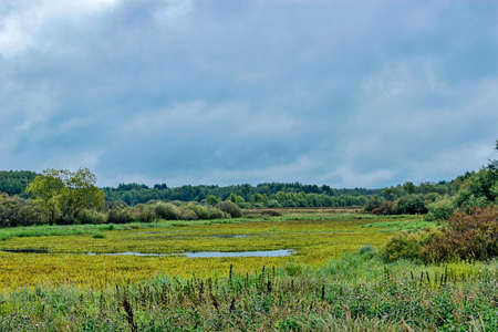 drizzling rain: Gray clouds and drizzling rain over marshland Stock Photo