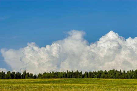 Blue cloudy sky over a green summer field Stock Photo