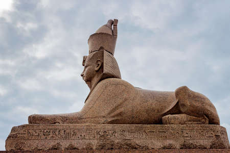 past civilization: The Egyptian sphinx on the Neva embankment in Saint Petersburg. Russia