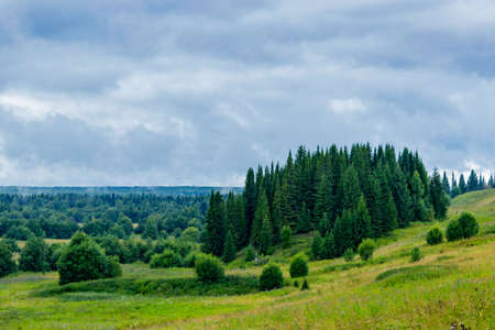 A view of the northern forest in a gloomy rainy day Stock Photo