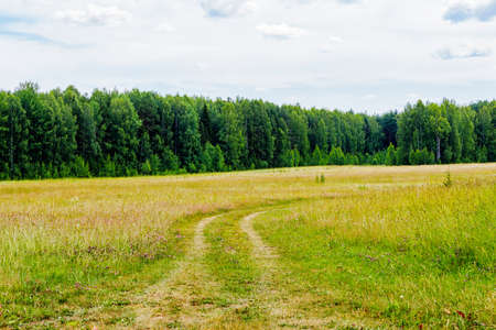 Dirt road in the field a summer day Stock Photo