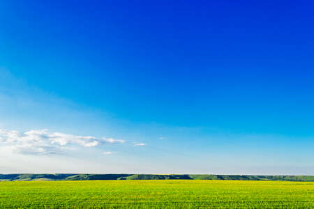field and hills