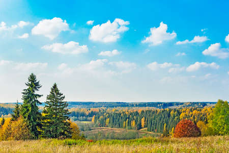 autumn colour: View from high hill to landscape with autumn forest
