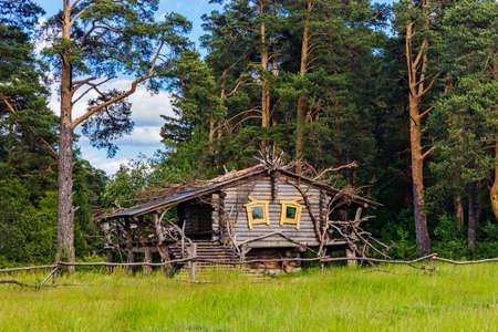 log cabin in a pine forest on a summer day Reklamní fotografie