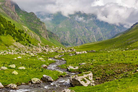 mountain stream flows over stones in a green valley
