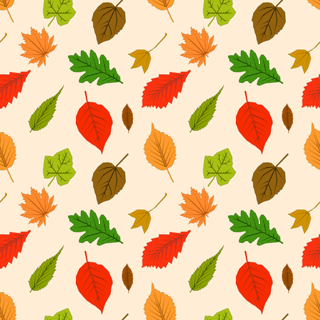 Seamless pattern with autumn outline leaves of different trees on a yellow background. Leaf Flat design Vector Illustration