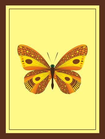 golden: golden butterfly