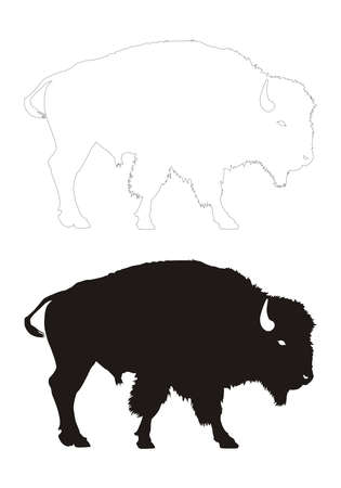 vectored: bison vector black silhouette and contour