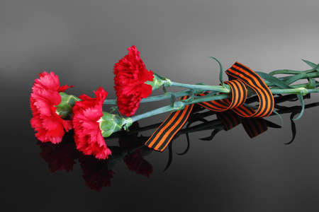 red carnations with Saint George ribbon on the dark background Stock Photo