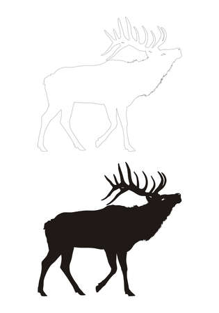 vectored: deer vector black silhouette and contour