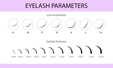 Eyelash Extension Guide. Direction schemes. Tips and tricks for eyelash extension. Infographic