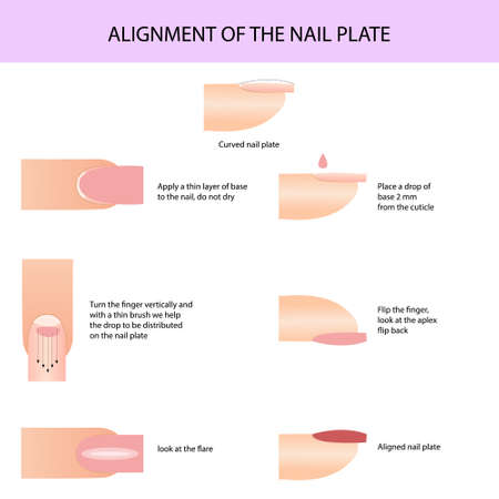 Alignment of the nail plate. Professional manicure guide, Vector illustration, infographics