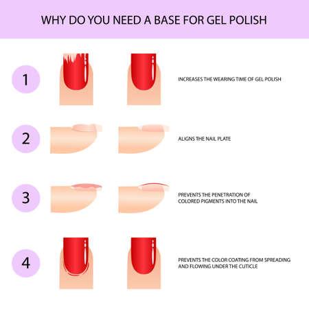 Using a base for gel polish. Professional manicure guide, Vector illustration, infographics Vecteurs