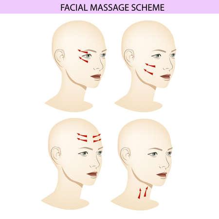 Facial Massage Scheme, Massage Visual Guide, Wind Illustration Vektoros illusztráció