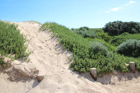 coastal erosion: Sandy track over dune to beach south western Australia