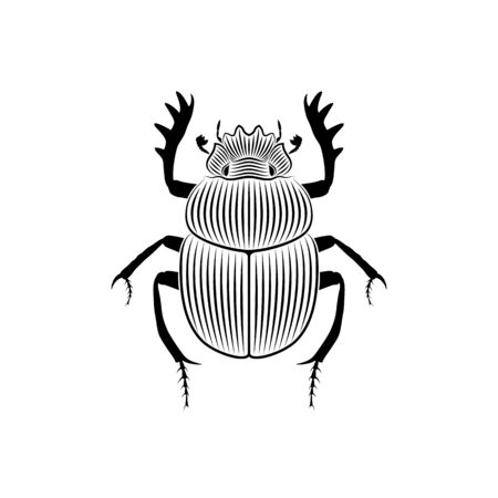 Graphic illustration of scarab engraved on white background Stock Illustratie